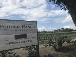 Sign out front of Biddle Ranch winery in Edna Valley AVA