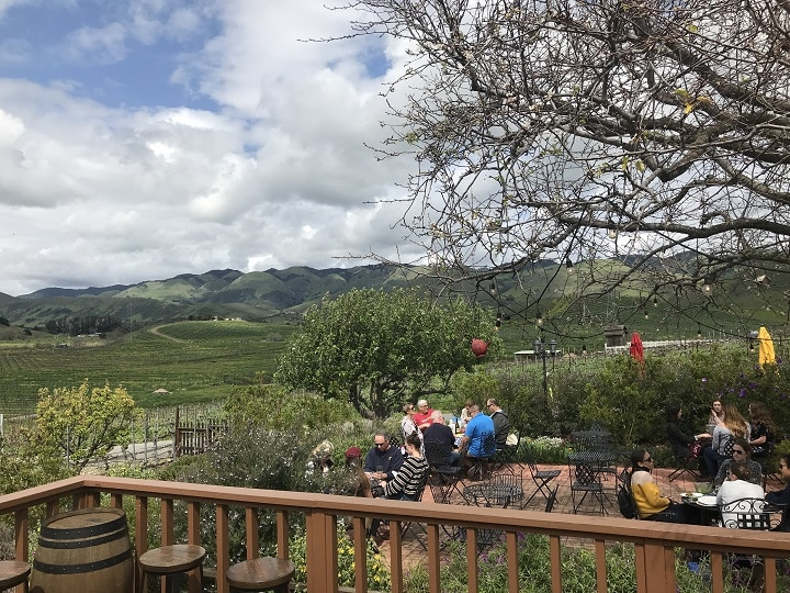 The view of the Wolff Vineyards from the outdoor patio
